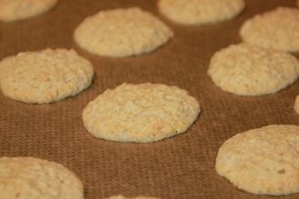 Haferflocken Kekse (19)