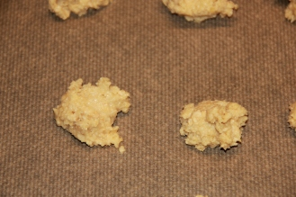 Haferflocken Kekse (21)