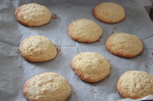 Weisse Schokolade Cashew Cookies (42)